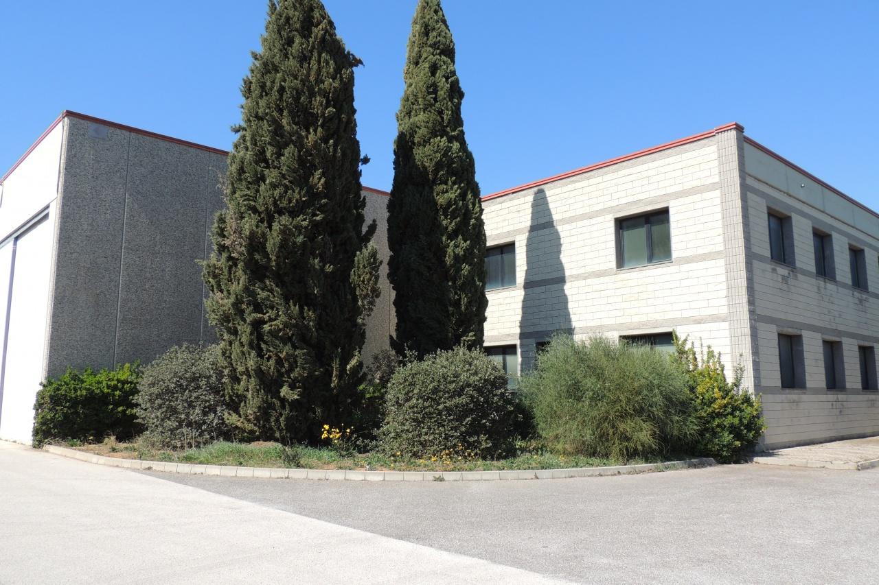 area industriale vendita follonica  industriale